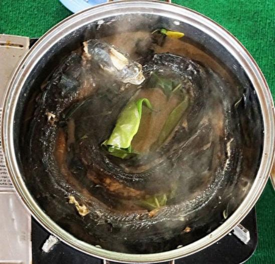 Lẩu lươn trái giác Cà Mau